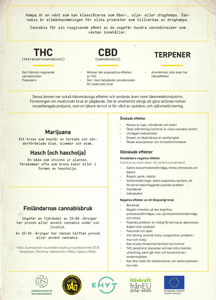 Kannabis faktaflyer